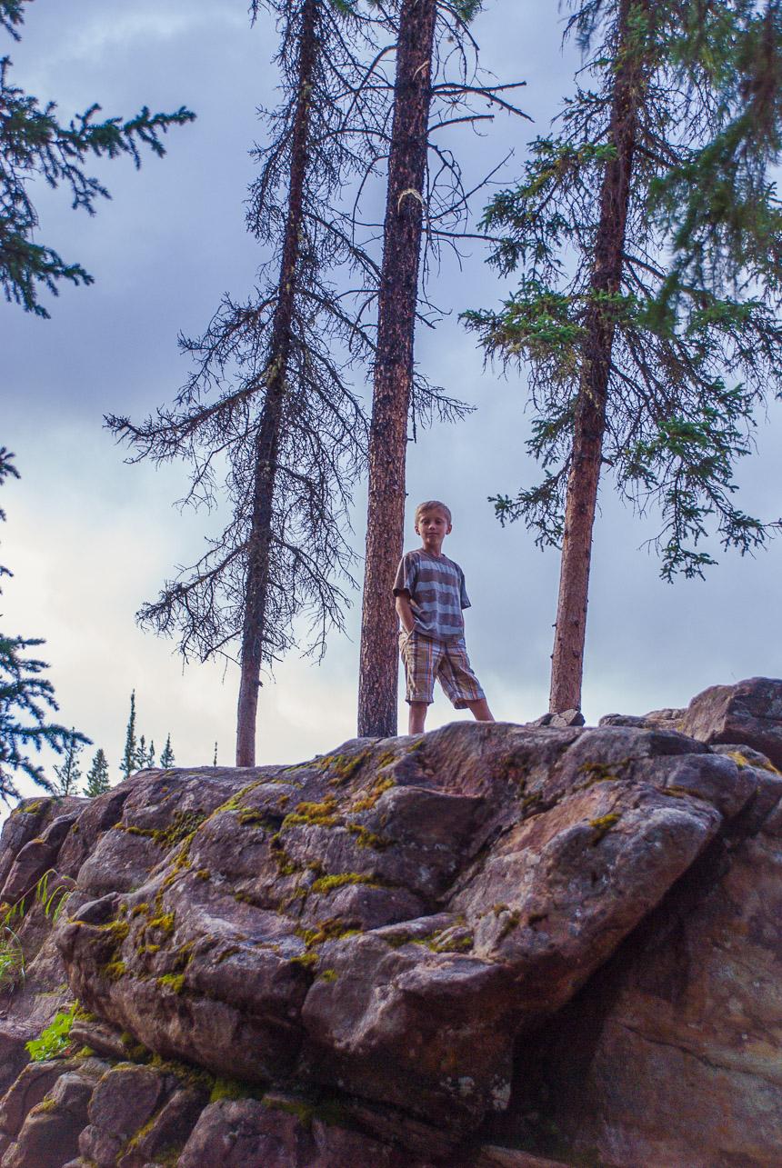Boy Ravine Jasper National Park